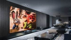 Animation films have become popular as forms of entertainment.